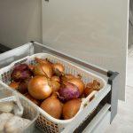 מטבח קלאסי מפורמיקה למשפחת אוזן